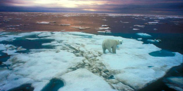 L'Autunno, l'orso russo e le alluvioni, l'Italia è sempre più a