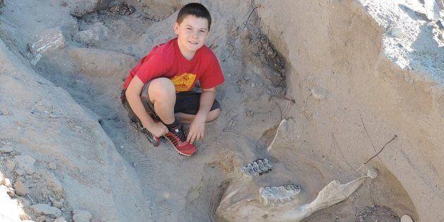 A 9 anni scopre un fossile di un milione di anni