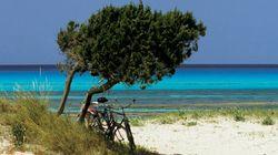 Il paradiso dei ciclisti sta arrivando. Ed è più vicino di quanto