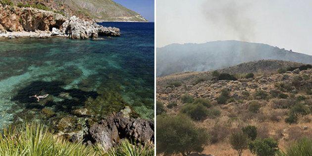 Un incendio senza fine sta devastando la riserva dello Zingaro e le sue orchidee uniche al