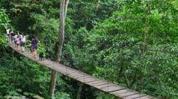Crolla ponte sospeso: decine di turisti precipitano in una gola profonda 80