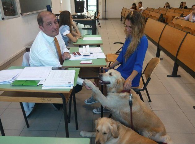 Cani 'antistress' agli esami universitari: dopo Yale e Harvard, anche