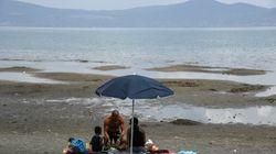 Scontro Acea - Regione: l'azienda fa ricorso al Tribunale delle acque contro lo stop ai prelievi dal lago di