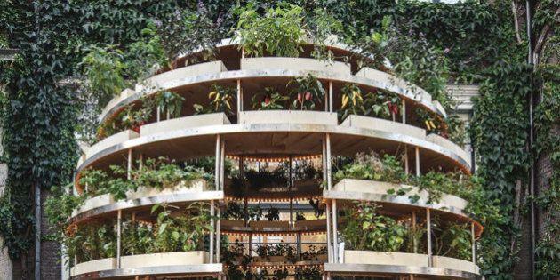 Ikea dà (gratuitamente) istruzioni per costruire un giardino sostenibile contro l'inquinamento delle...
