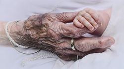 Il gesto della signora Elsa commuove l'Italia: muore e lascia in eredità 3,7 milioni di euro all'Ospedale Infantile di