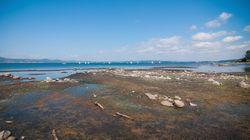 Scongiurato il razionamento dell'acqua e prolungati i prelievi dal Lago di Bracciano. Ma il comitato insorge: