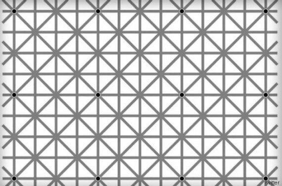 Quanti puntini riuscite a contare in questa foto? La soluzione nel