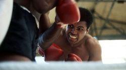 Il figlio di Mohammed Ali