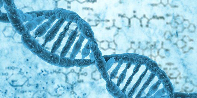 Taglia e incolla del Dna su embrioni umani riuscito con successo in Usa: così viene rimossa una malattia...