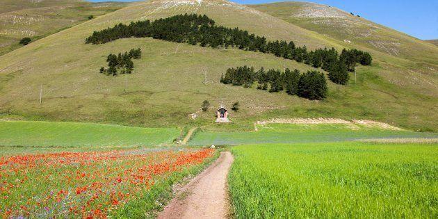 Castelluccio Di Norcia, Monti Sibillini, Umbria (Algol/AGF/UIG via Getty
