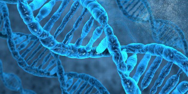 Scoperte molecole contro l'invecchiamento cellulare da un team di ricercatori