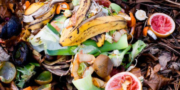 Global Waste Campaign, la campagna contro lo spreco alimentare di Huffington Post e