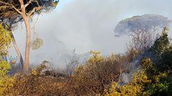 Primato italiano in Europa per numero di incendi. Due morti a Tivoli, scoperti volontari dei vigili del fuoco piromani a