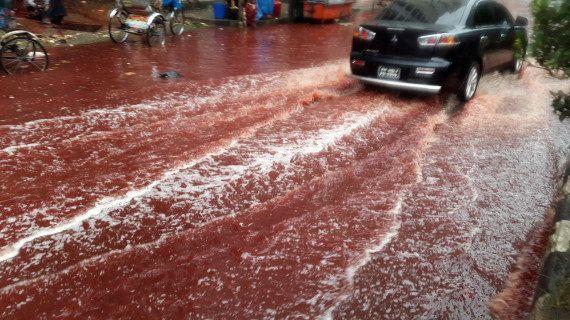 Dacca allagata di pioggia e di sangue per Eid al-Adha, la festa del sacrificio (FOTO,