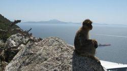Il paradosso della triste Gibilterra: in piena Europa ma fuori