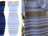 newest 930a3 e8336 Bianco e oro o blu e nero? Oggi uno studio su 13mila persone ...