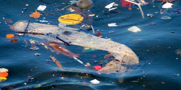 Un mare di batteri. Il 40% dell'acqua campionata da Legambiente contiene batteri oltre i limiti di
