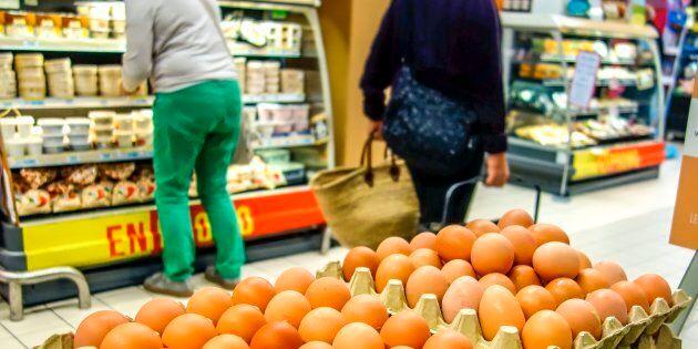 Anche l'Italia tra i 17 Paesi coinvolti nel caso delle uova contaminate dal fipronil. Min. Salute: