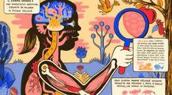 Come funziona il cervello? A spiegarvelo ci pensa un libro
