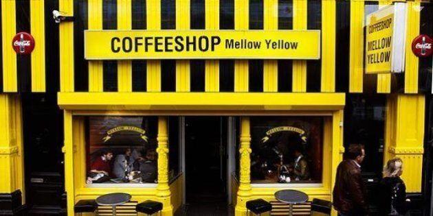 Ad Amsterdam chiude il Mellow Yellow, il coffee shop più antico della capitale
