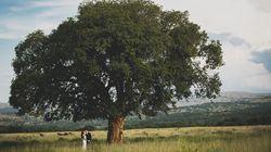 Mi sposo in Sudafrica. La storia d'amore di Enrico e