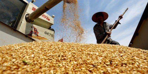 Oro, rame, petrolio, cereali. Come investire sulle materie prime e ottenere un buon