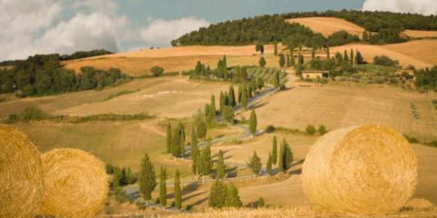 Hay bale and rolling landscape, Tuscany,