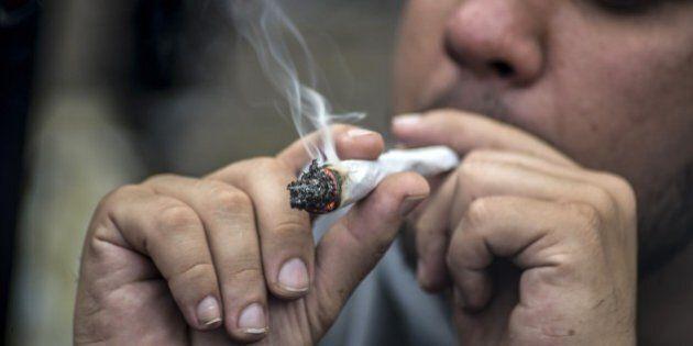 Coltivare una piantina di marijuana sul balcone di casa non è reato: la sentenza della