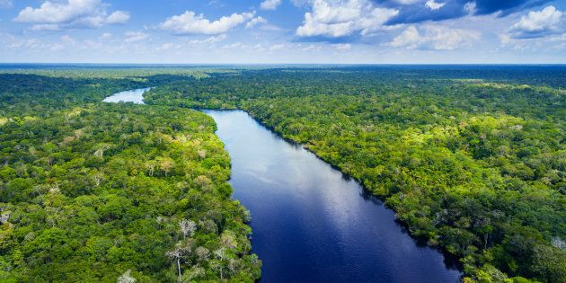 Amazon river in