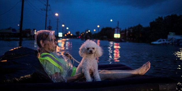 A rescue helicopter hovers in the background as an elderly woman and her poodle use an air mattress to...