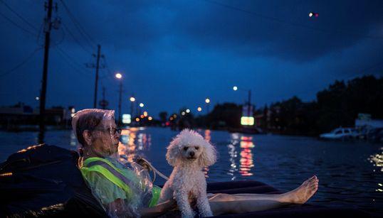 L'uragano #Harvey, le minacce di Kim Jong Un, il festival Burning Man nel deserto del