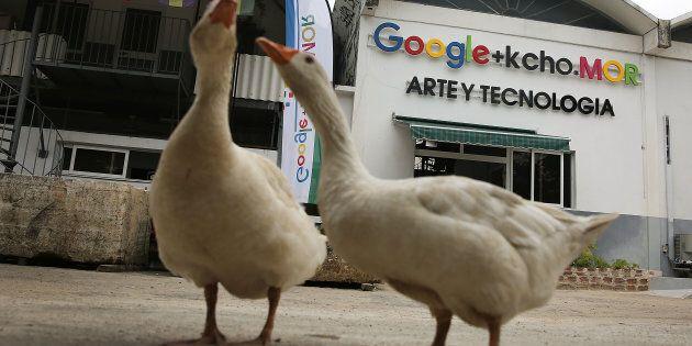 Google è la prima azienda internet straniera ad approdare a
