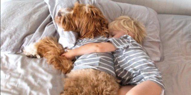 Inseparabili fin dal primo incontro: il bimbo e il cane sono la cosa più tenera che vedrete