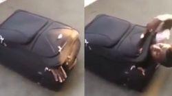 Parte da Milano nascosto in una valigia: migrante eritreo bloccato in
