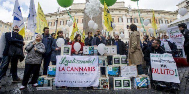Ora il presidente Gentiloni dica cosa vuole fare con le droghe