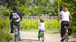 Cicloturisti alla ribalta! Passeggiate spumeggianti in Franciacorta fra natura, degustazioni e visite