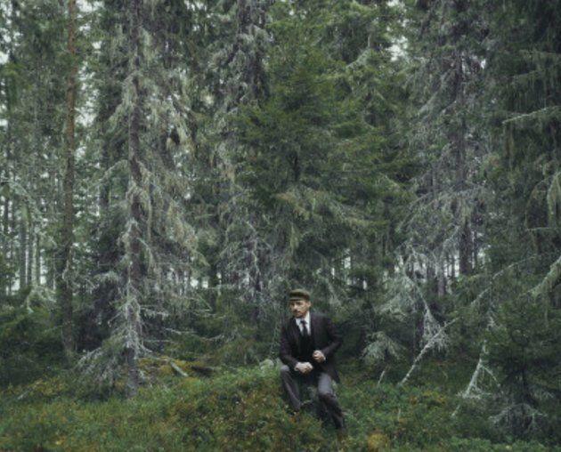 Forest surounding the railway around Umea, Sweden, November