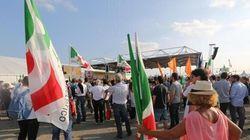 Emilia Romagna, spunta la senatrice bolognese Ghedini come candidatura unitaria (FOTO,