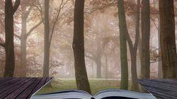 I 10 romanzi dei giallisti scandinavi che è impossibile non voler