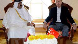 IL SULTANO CON L'EMIRO (CONTRO IL SULTANO) - Erdogan pronto a schierare 15 mila soldati a difesa del Qatar isolato (di U. De