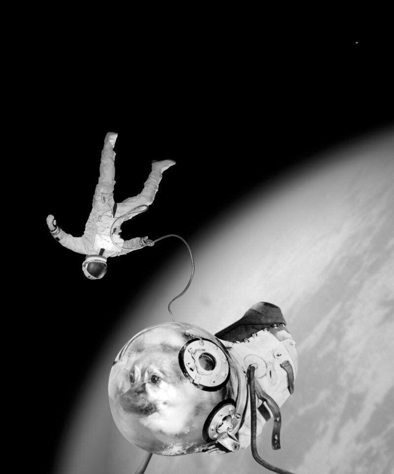Sputnik kloka, Joan