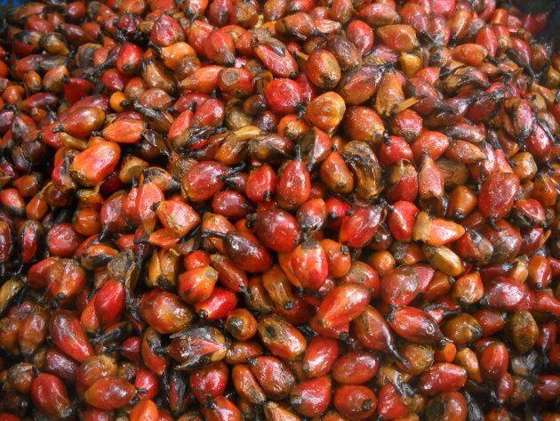 L'olio di palma rosso e profumato della Guinea Bissau è diventato presidio Slow