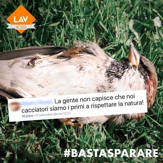 Milano censura la campagna della LAV. L'ideatore: