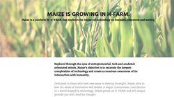 Nasce Maize, la prima rivista online curata da guru e influencer
