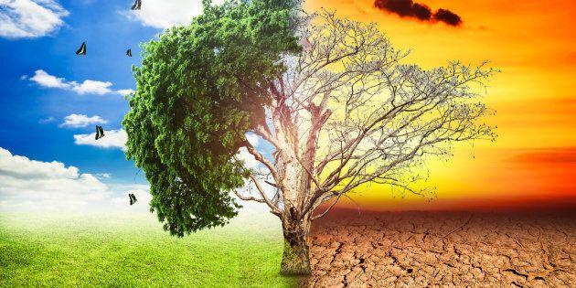 Cambia il clima, devono cambiare anche le