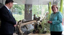 Panda-diplomazia di Berlino. Xi vede Merkel, la Cina sostiene la Germania al