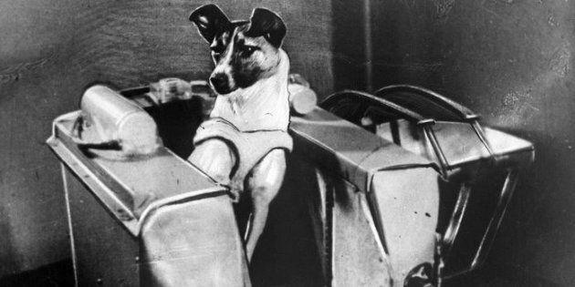 Adilia Kotovskaia, la padrona di Laika, la cagnolina che venne lanciata nello Spazio:
