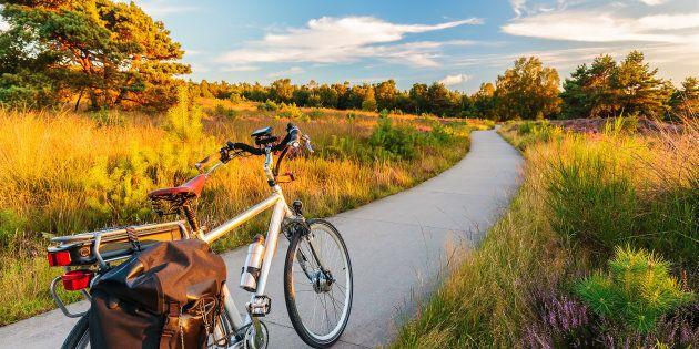 In Olanda è nata la prima pista ciclabile al mondo costruita con la carta igienica