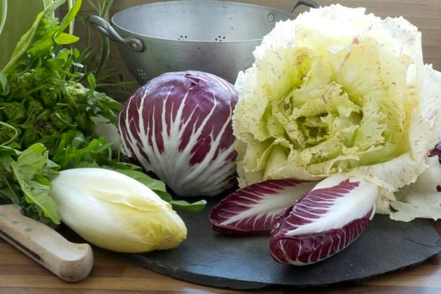 Miscellaneous chicories: Treviso, Verona, and Castelfranco radicchio, Puntarelle, Belgian