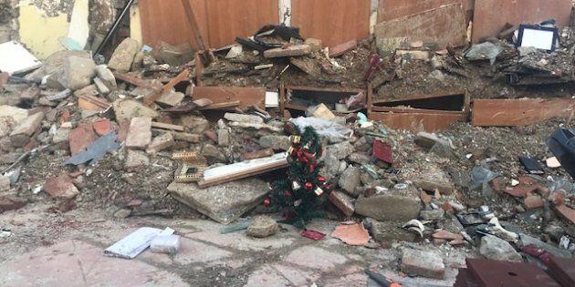 Dalle macerie di Amatrice spunta l'alberello di Natale: